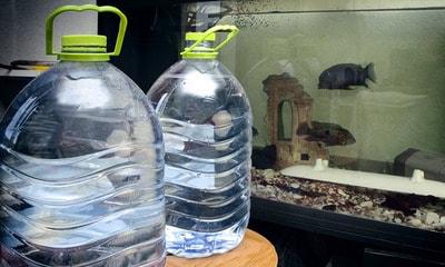 Отвечаем на вопрос как подготовить воду для аквариума?