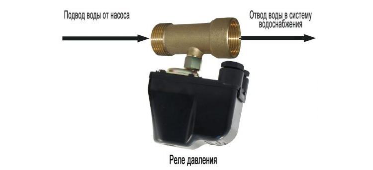 foto18126-2
