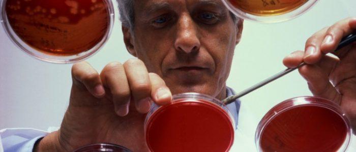 Виды и лечение миеломоноцитарного лейкоза