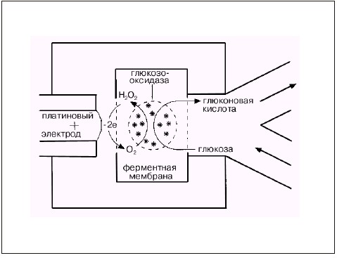 Принцип действия глюкометра